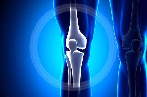 колінний суглоб