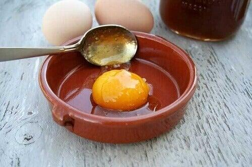 сире яйце в тарілці