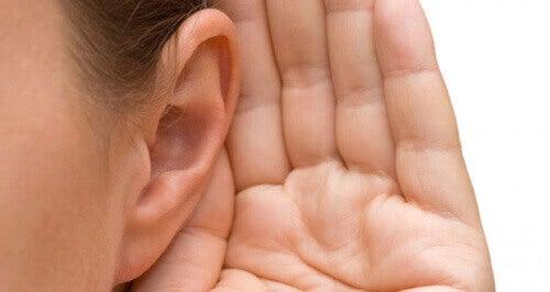 дзвін у вухах