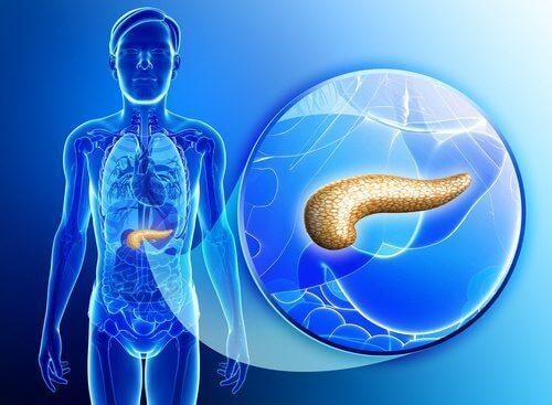 Як вивести токсини з підшлункової залози