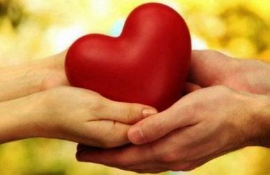 серце в долонях