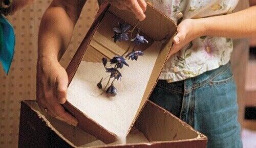 силікагель можна використовувати щоб засушити квіти