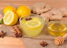 1-lymon-i-imbyr