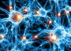 1-нейрони