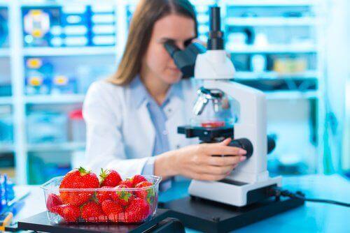 пестициди під мікроскопом