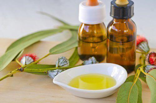 ефірні олії допоможуть від комах