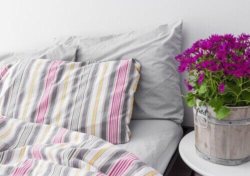 квіти біля ліжка