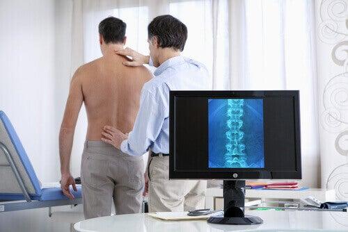 Хребет та біль у спині