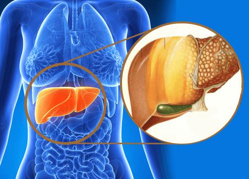 Кокосова олія для профілактики жирової хвороби печінки