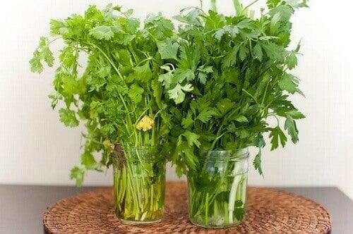 2-fresh-herbs-1