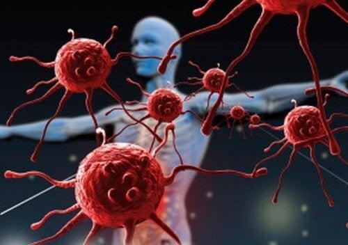 імунна система людини
