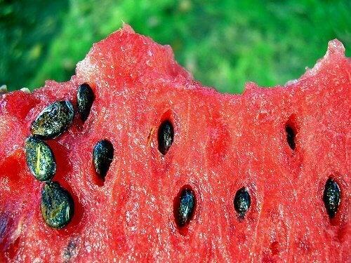насіння кавуна це антиоксидант
