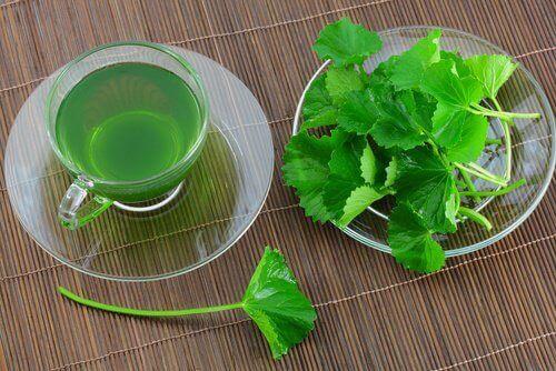 чай з петрушки