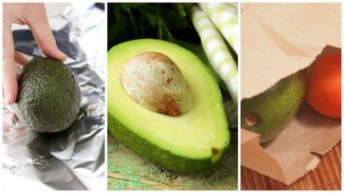 5 cпособів зробити авокадо стиглим за кілька хвилин
