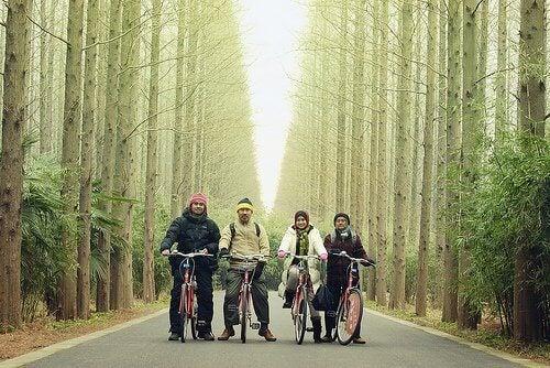сім'я в лісі на велосипедах