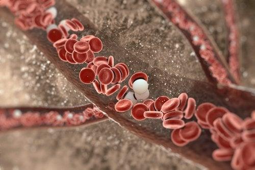 кровотік