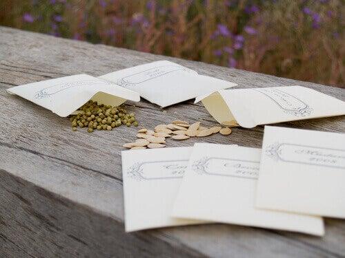 насіння в конвертах