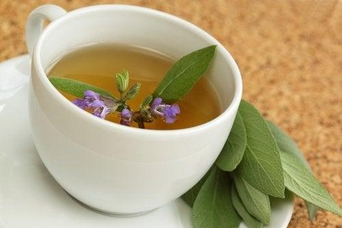 чай із шавлії