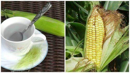 1-perevahy-kukurudzhynykh-rylts