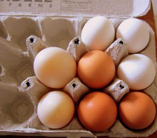 домашні яйця в контейнері