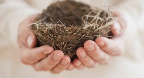 Синдром порожнього гнізда: сповнена самотністю домівка