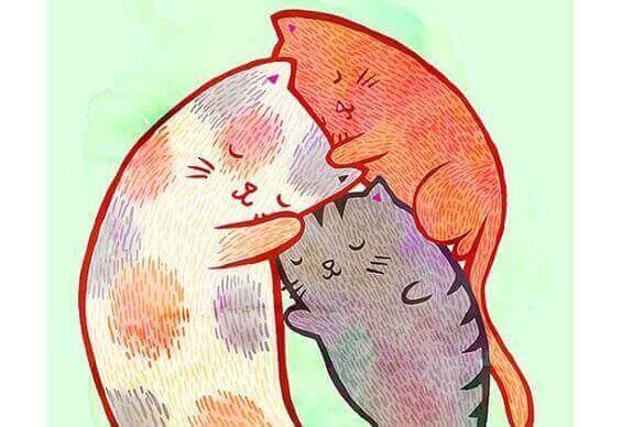 родина котів