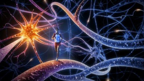 8 найкращих вправ для зміцнення мозку