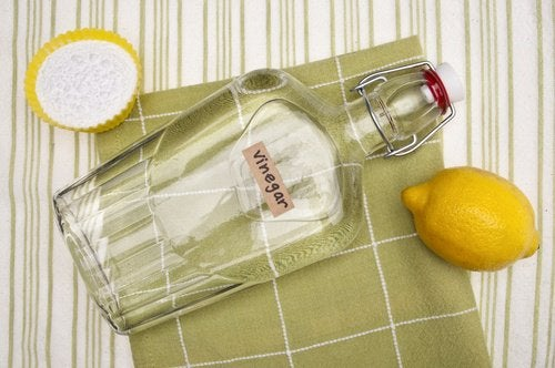 лимон та білий оцет допоможуть очистити праску