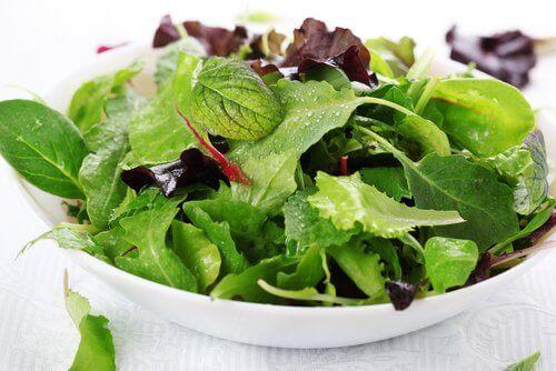 зелений овочевий салат