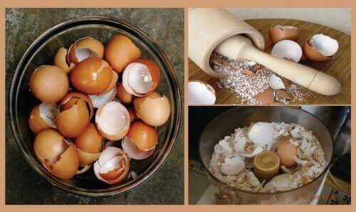 6 натуральних засобів, до яких входить яєчна шкарлупа