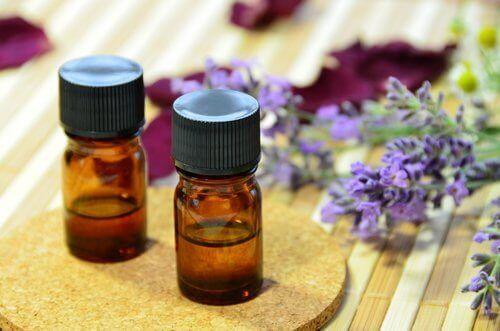 лавандова олія як спосіб боротьби з мухами