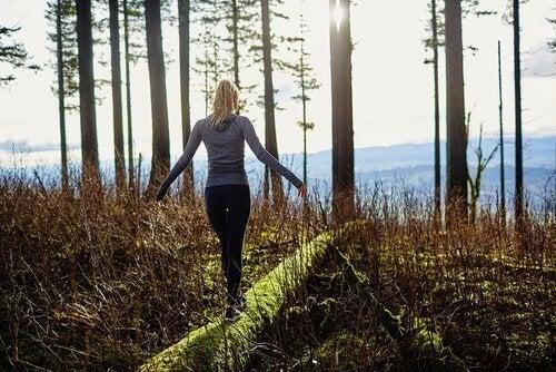 прогулянка по лісу