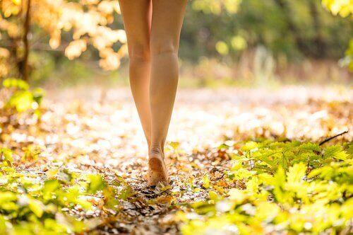 піша прогулянка на природі