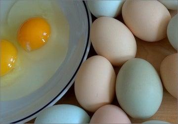 яєчні жовтки та білки