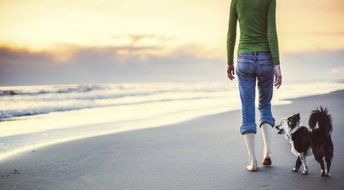 прогулянка по березі
