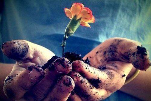 Кохання потрібно підживлювати щодня, щоб воно розквітало