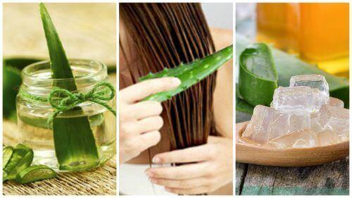 5 засобів з алое вера для зміцнення волосся