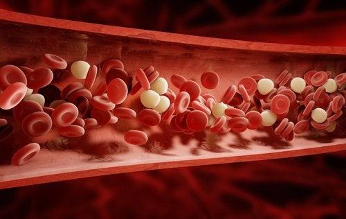 4 ознаки поганого кровообігу