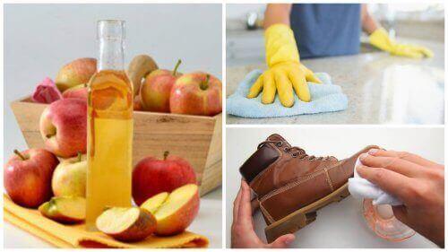 7 найкращих способів використання яблучного оцту у побуті