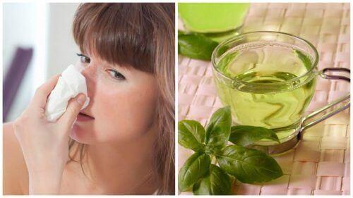 5 натуральних засобів проти закладеного носа