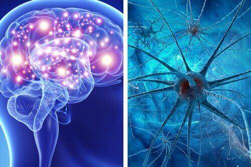 5 звичок, які шкодять розуму людини
