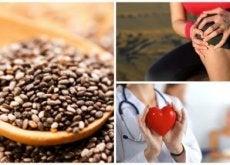 переваги насіння чіа