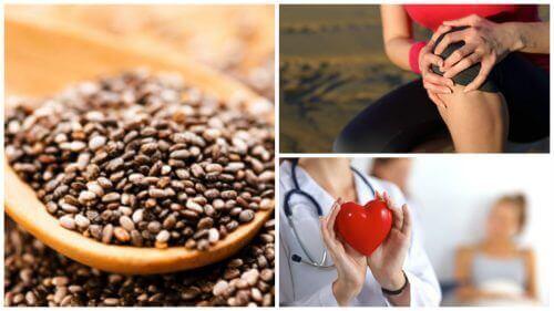 Дивовижні переваги насіння Чіа, про які варто знати