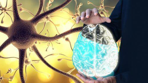 """Як """"розбудити"""" блукаючий нерв, щоб покращити здоров'я всього організму"""