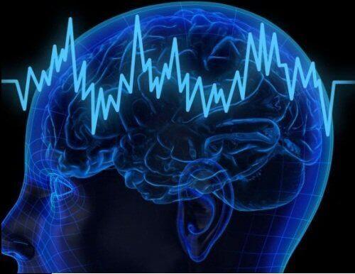 споживання баклажанів покращує роботу мозку