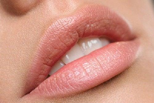 арганова олія як бальзам для губ