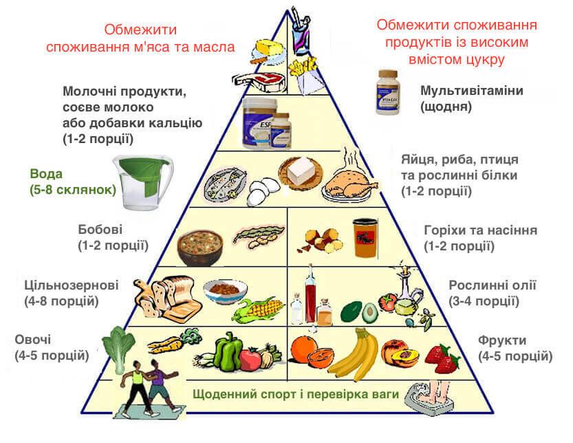 нова харчова піраміда
