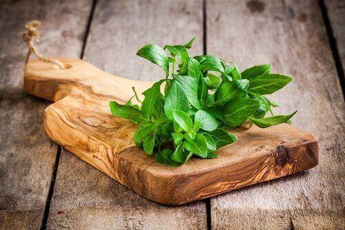 базилік допомагає виводити токсини з організму