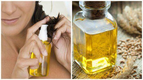 Олія зародків пшениці та її користь для волосся