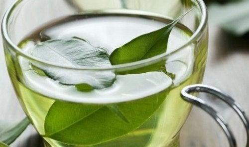 зелений чай від раку шкіри